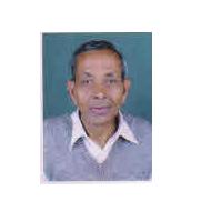 Mangtu Ram Bhoot